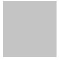 easa_gris_logo